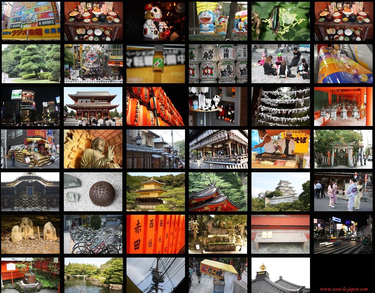 Un voyage au Japon, un moment inoubliable
